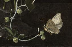 Kytice ve skleněné váze s motýlem